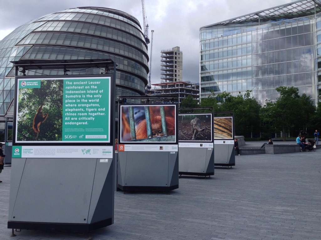 View from the start of the exhibition, with City Hall in the background