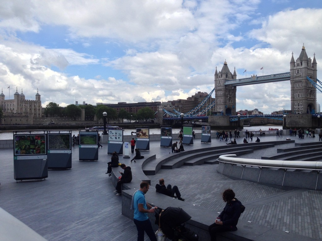 View from the top of the scoop with Tower Bridge in the background.